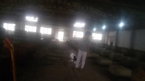 山东胶州:企业两千万资产被抢法院和警方被指是帮凶