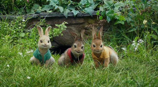 """《比得兔》配音演员被""""内定"""" 拍摄现场萌兔出动"""