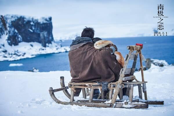 《南极之恋》开画全平台平均9.0分 六大看点洗眼暖心
