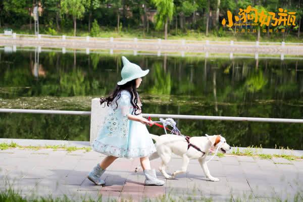 狗年最旺亲子合家欢 《小狗奶瓶》上映聚焦爱与陪伴