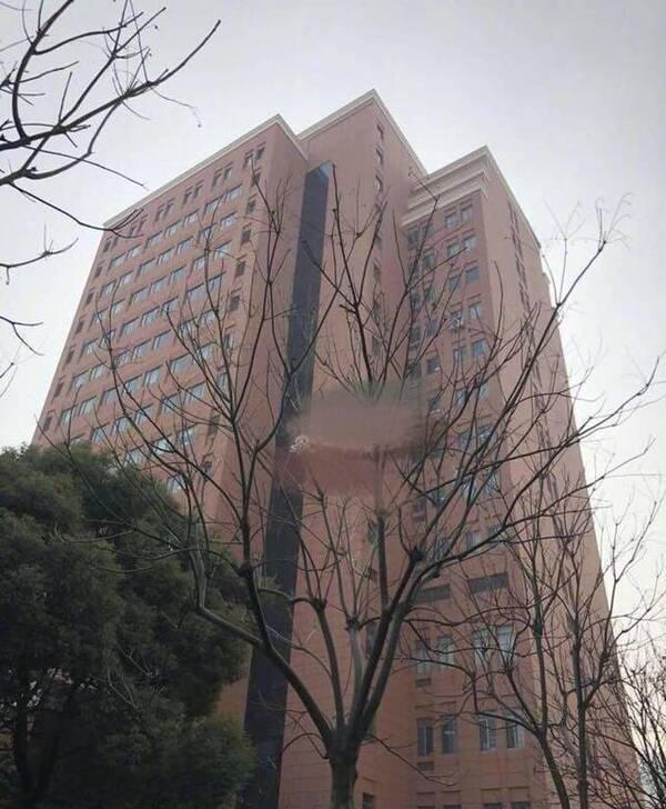 张杰何炅在医院陪伴生产的谢娜 全家福疑曝光