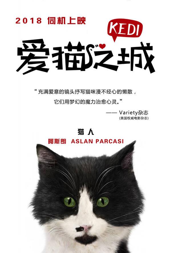 《爱猫之城》萌猫角色海报发布 七大异域风情猫来袭