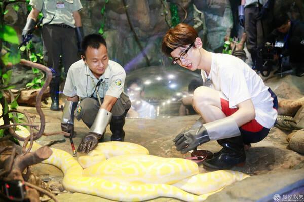 """来到动物园的男神们集体开启""""撩动物""""模式,羊驼,树懒,长颈鹿,熊猫统统图片"""