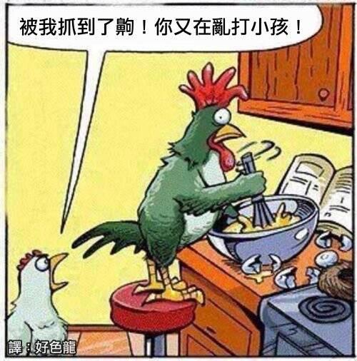 午fun来了:一天里不能吃太多鸡蛋 对母鸡身体不好图片