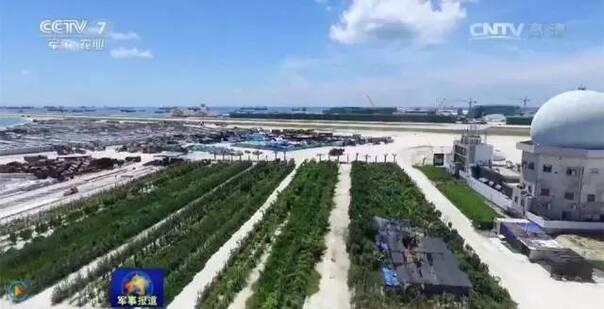 中国岛礁建设能力到底有多强大 - NY6536群博客 - 南洋65初三(6)的群博客