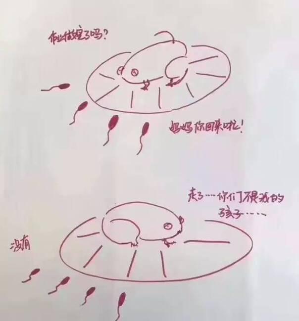 漫画小蝌蚪找妈妈一夜燃爆朋友圈图片
