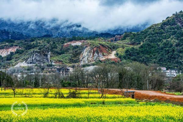 低低的云层,墨绿的山,窄窄的乡间小路,金黄的油菜花,简直太美了!