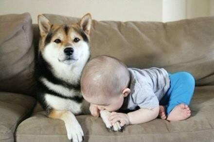 小孩子交朋友很简单