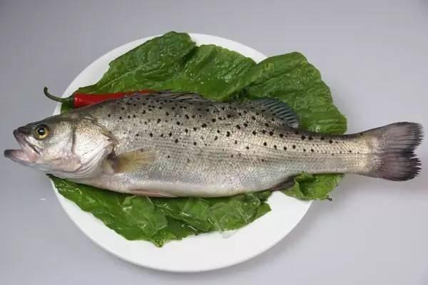 鱼脑 鱼脑中含有丰富的多不饱和脂肪酸和磷脂类物质,这些物质有助于