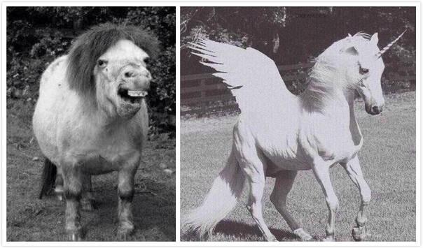 图片美化前后对比