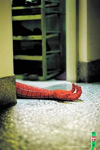澳洲男子追杀超大蜘蛛 被人当成家暴犯报警