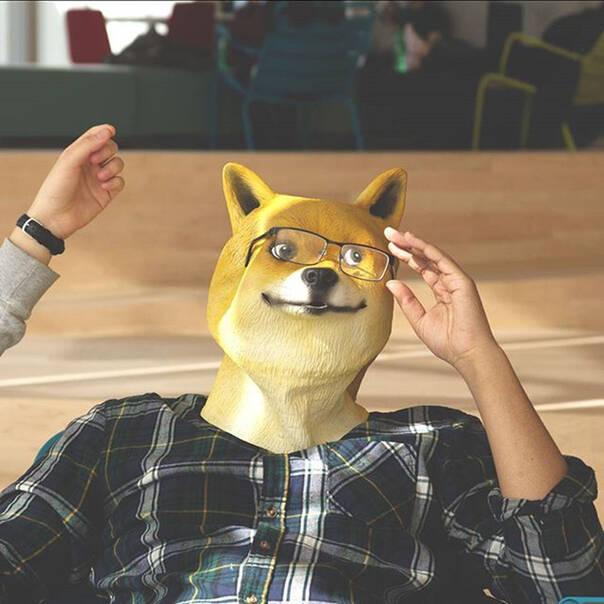 围观150721:国外新出的doge面具 画面太美我不敢看