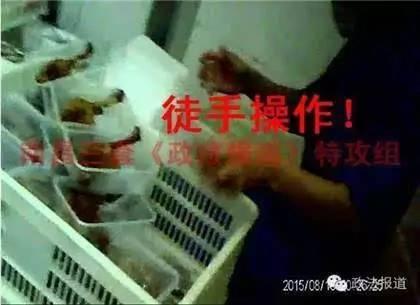 绝味鸭脖被指鸭脚掉地上仍卖    菜碟在便器冲洗
