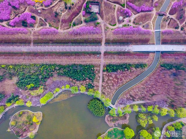 航拍洛阳 俯瞰隋唐城遗址植物园