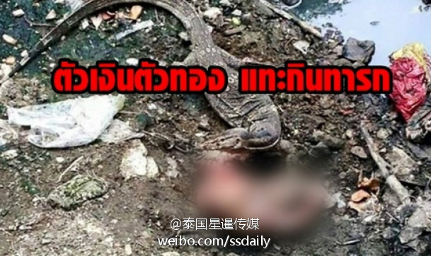 恐怖!泰国大蜥蜴吃掉了4个月大的婴儿(组图)