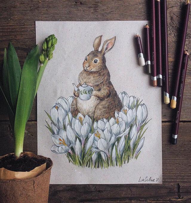 铅笔画 花朵 手绘