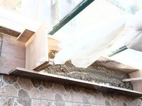 突中间凹的破木板床