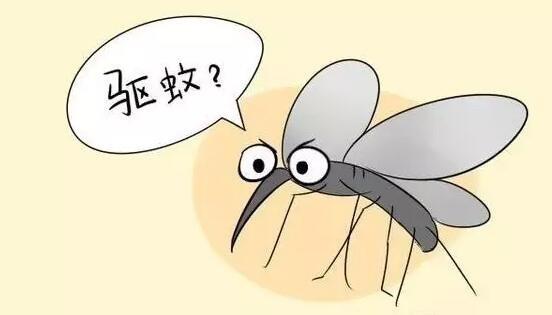 卧室用了一张纸 一夏天没被蚊子咬图片