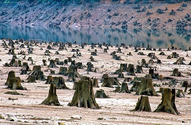 19/28挖掘:加拿大阿尔伯塔省油砂地区的鸟瞰图