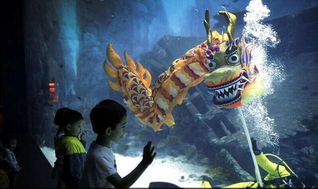 海底世界手工制作潜水员图片