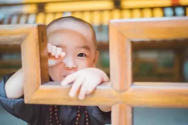 """灵隐寺年仅两岁的最萌""""小和尚"""""""