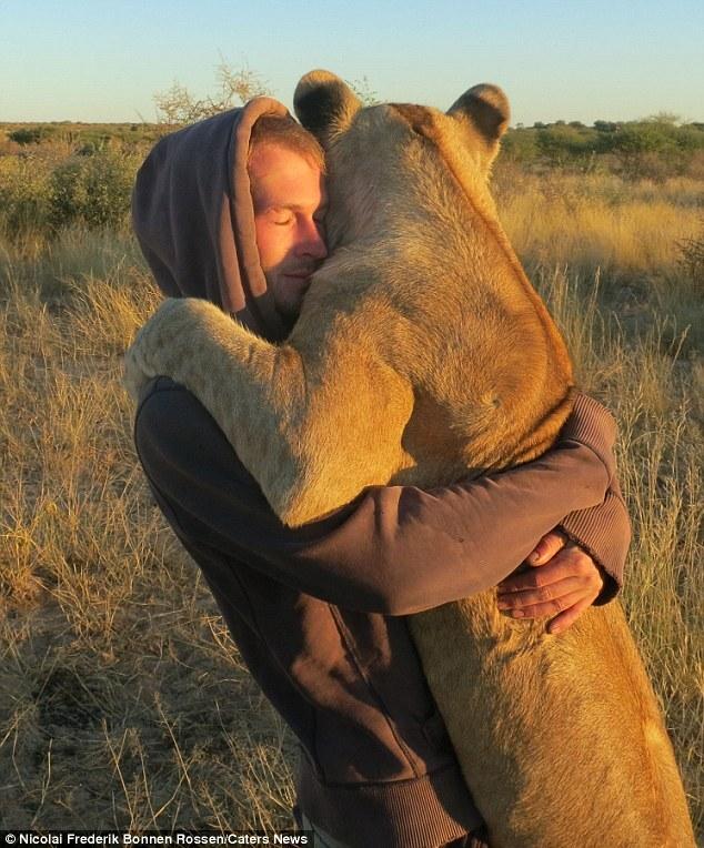 看母狮陶醉的表情,心都融化了