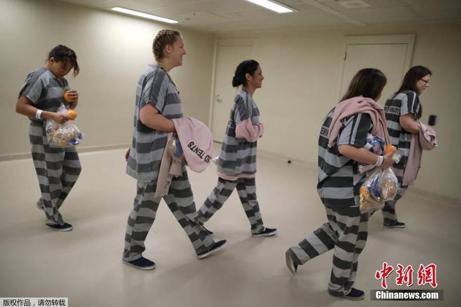 美国监狱出奇招 让犯人照顾受虐待动物 - 梅思特 - 你拥有很多,而我,只有你。。。