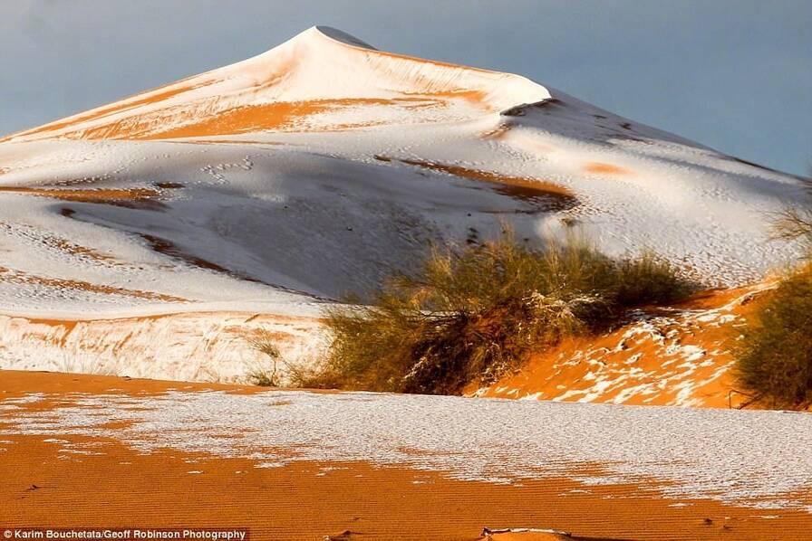 撒哈拉沙漠下雪了