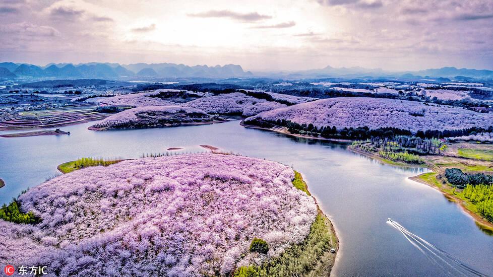 航拍中国大地美好春日盛景!灿烂夺目惊艳世界