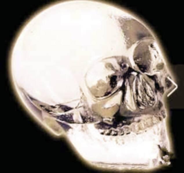 非洲出土类金刚石头盖骨,疑为非地球人类头骨(图)