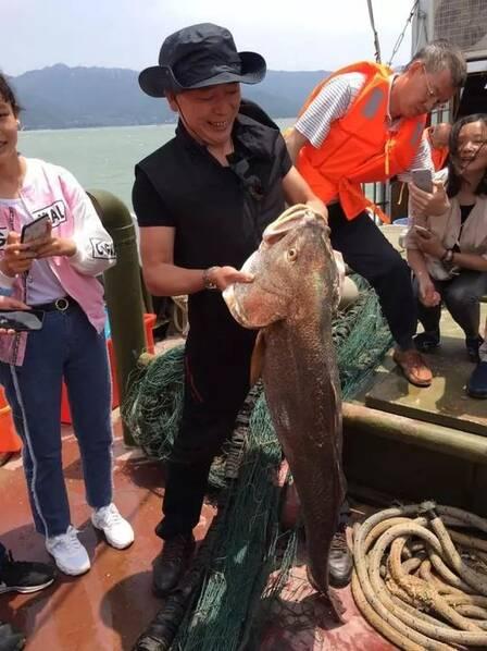 渔民捕到天价鱼 卖出347万【组图】 - 春华秋实 - 春华秋实 开心快乐每一天