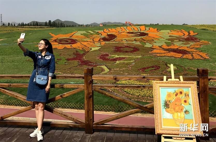 书画丨大地景观《向日葵》巨幅花草画亮相秦皇岛