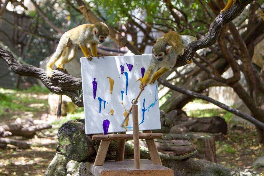 """动物园拍卖动物画作 """"画家""""包括大象和蟑螂"""