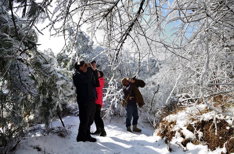 一步一景,广元有个地方叫水磨沟,冬季徒步,看最美雪景