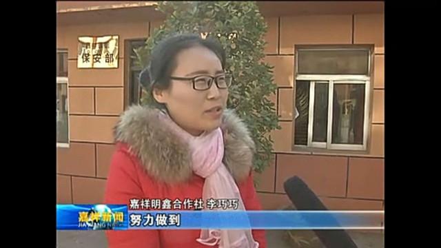 电视台采访嘉祥县村网通运营中心李巧巧发展农村电商并进行