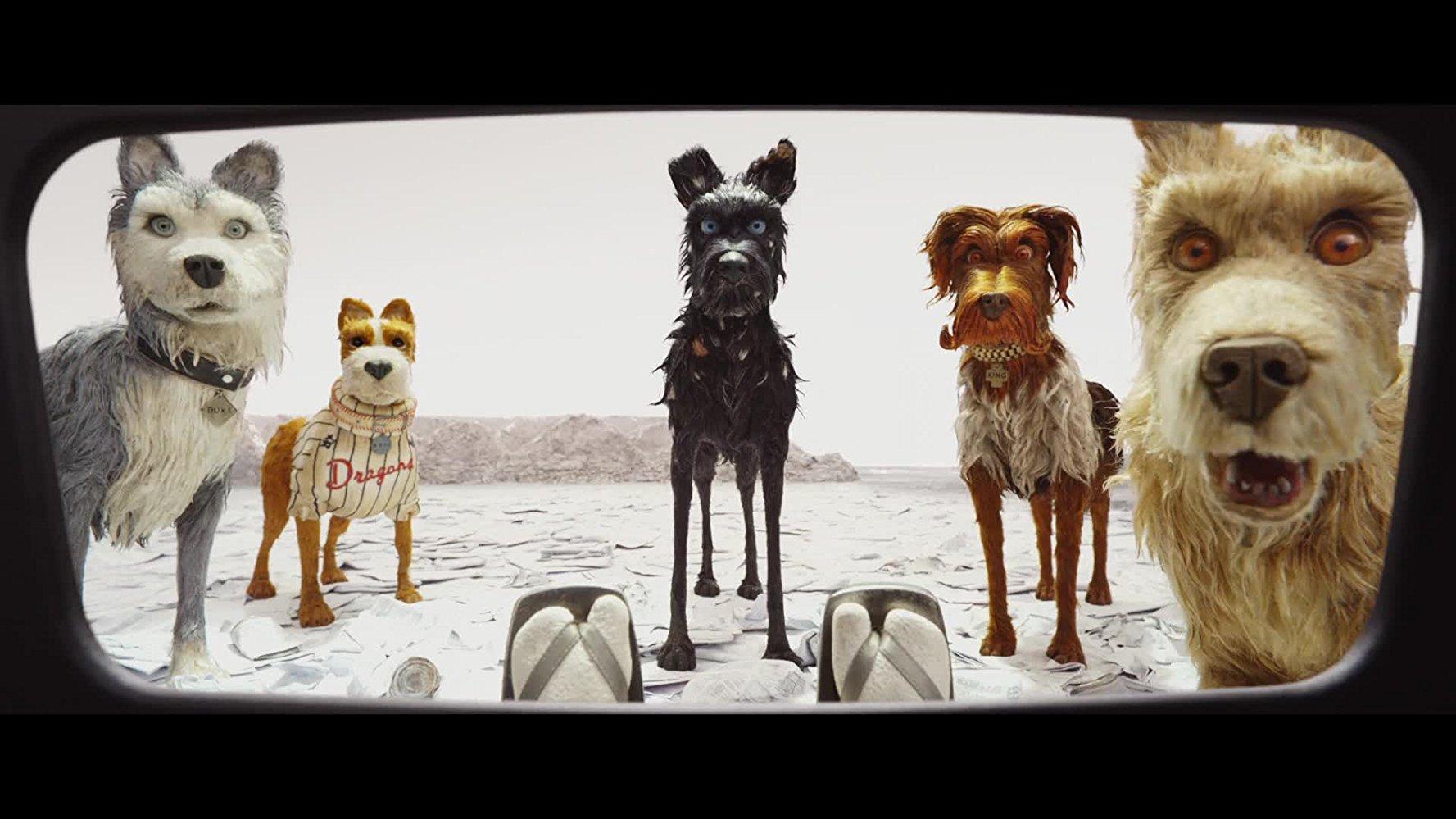 旧爱新欢齐上阵 《布达佩斯大饭店》导演携新作《犬之岛》参与北影节
