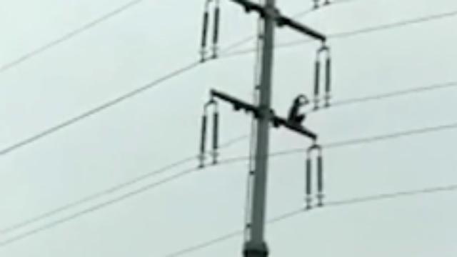 南京一男子爬上高压电塔 脱衣挥舞瞬间触电坠亡