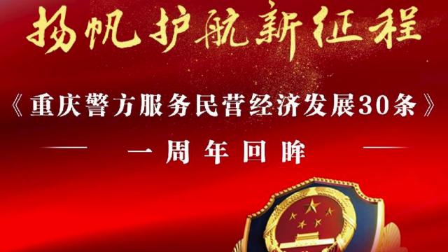 重庆市公安局服务民营经济发展工作推进会之白乐天董事长采访