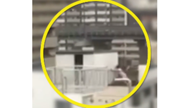 日本25年来最强台风:女子舍身护房 房子瞬间被吹飞
