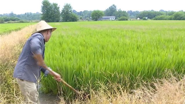 强化质量管理 按时保质完成农田水利基本建设任务