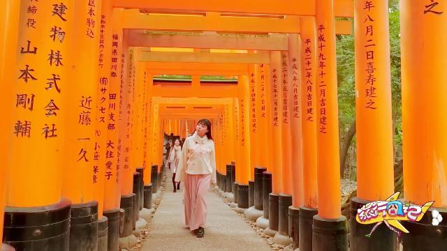 到日本必去的千本鸟居,艺伎回忆录的取景地,传说中神明的地盘