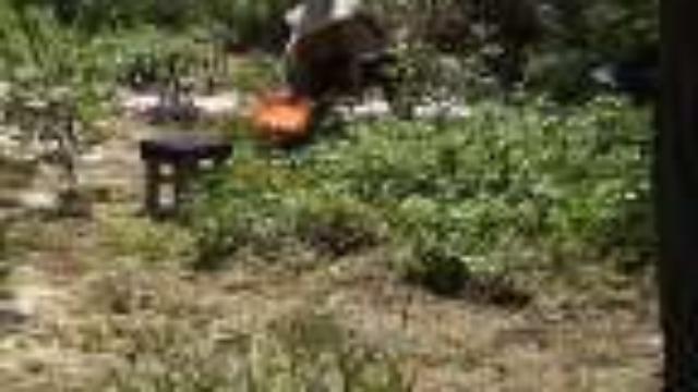 西北农村菜园子风景-夏季黄土高原风景