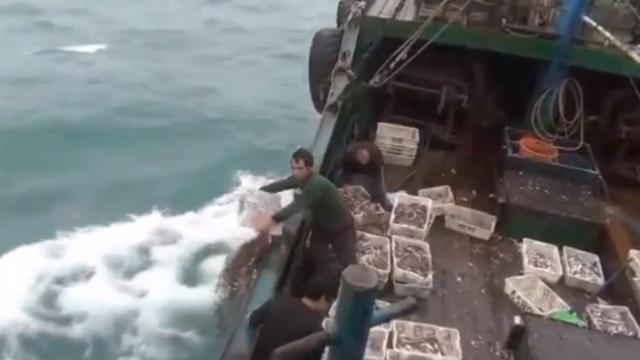 猖狂!台当局舰艇又扣押大陆渔船 现场要求渔民将渔获倒回大海