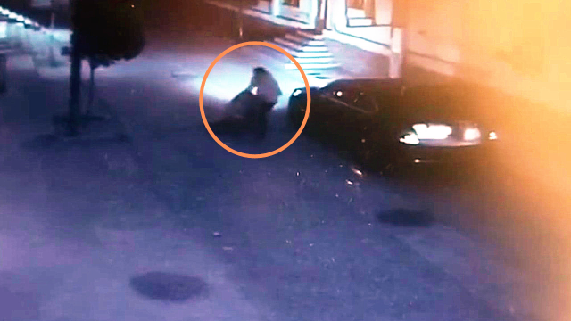 女生被男子强拖硬拽塞进后备箱事件引关注!警方通报案情