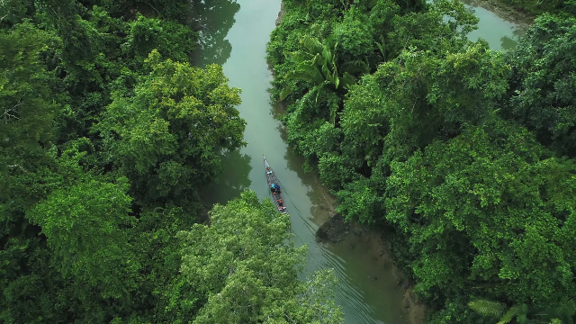 国家地理.亚马逊:生命起源[英字]