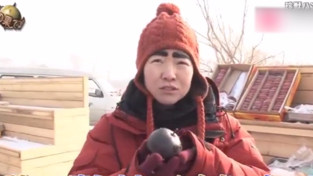 日本艺人第一次吃中国东北的冻梨,第一反应:不是坏了吧?