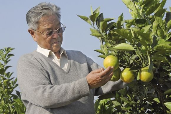 商界传奇褚时健去世 74岁再创业85岁成亿万富翁