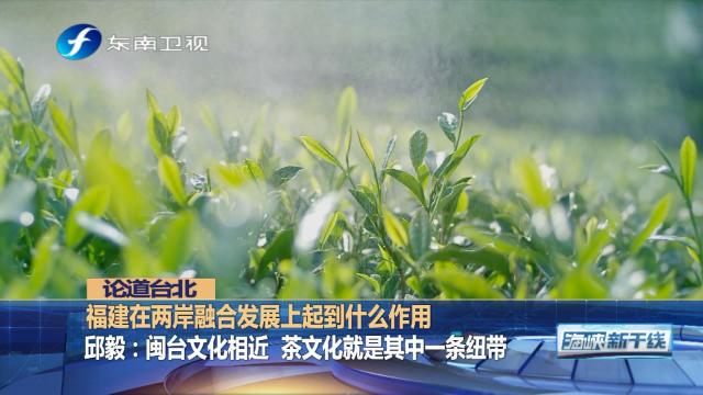 """邱毅:文化断不了,福建""""美丽乡村""""吸引台湾专业人才"""