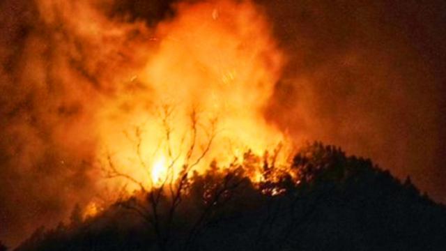 江西景德镇市发生森林火灾 暂无人员伤亡报告