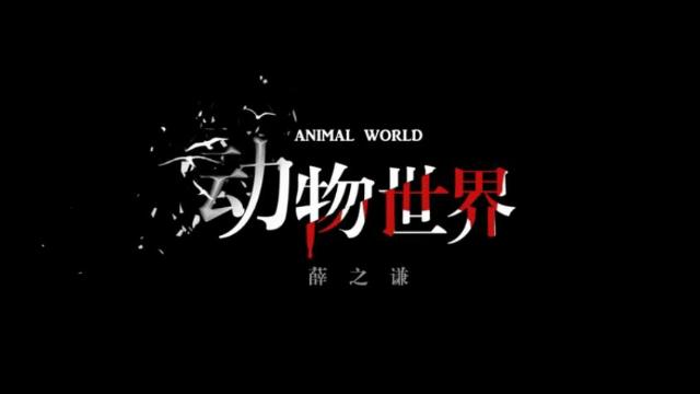 [异维传媒 音乐推荐]薛之谦 - 《动物世界》